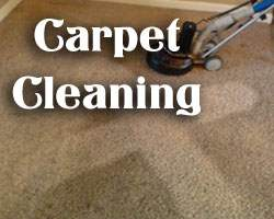 carpet cleaners in texas and dallas